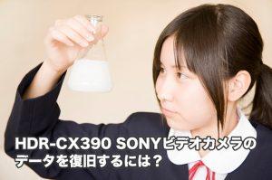 SONY HDR-CX390 データ復旧 徹底的に復元します